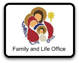 Family and Life Office